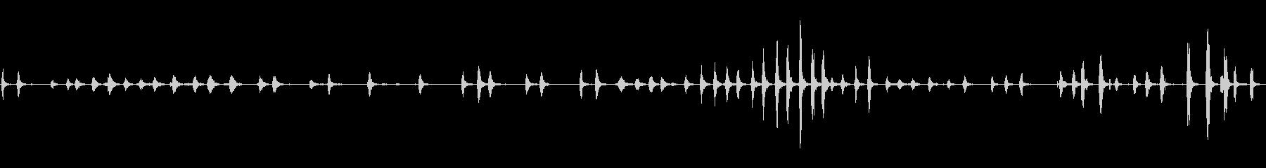 鶏の鳴き声、スコーク、フラッター1の未再生の波形