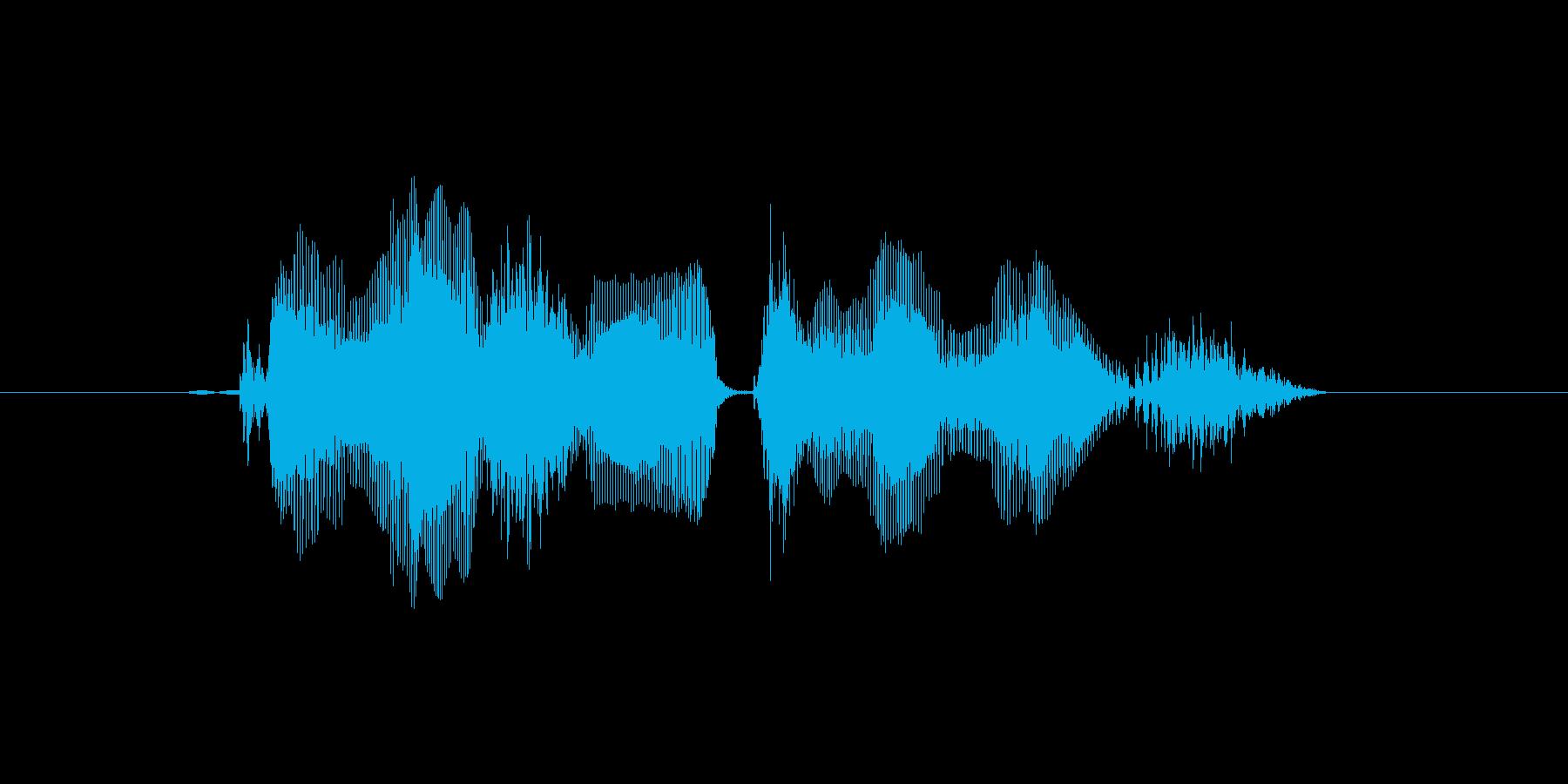 この仕打ちは何だの再生済みの波形