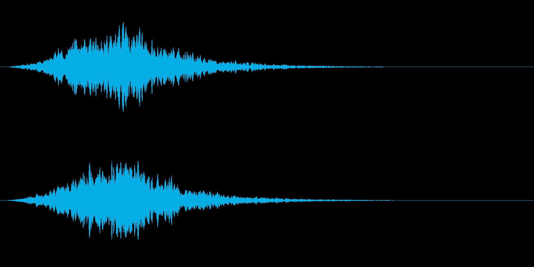 スタブ高周波電子ホーンスタブの再生済みの波形