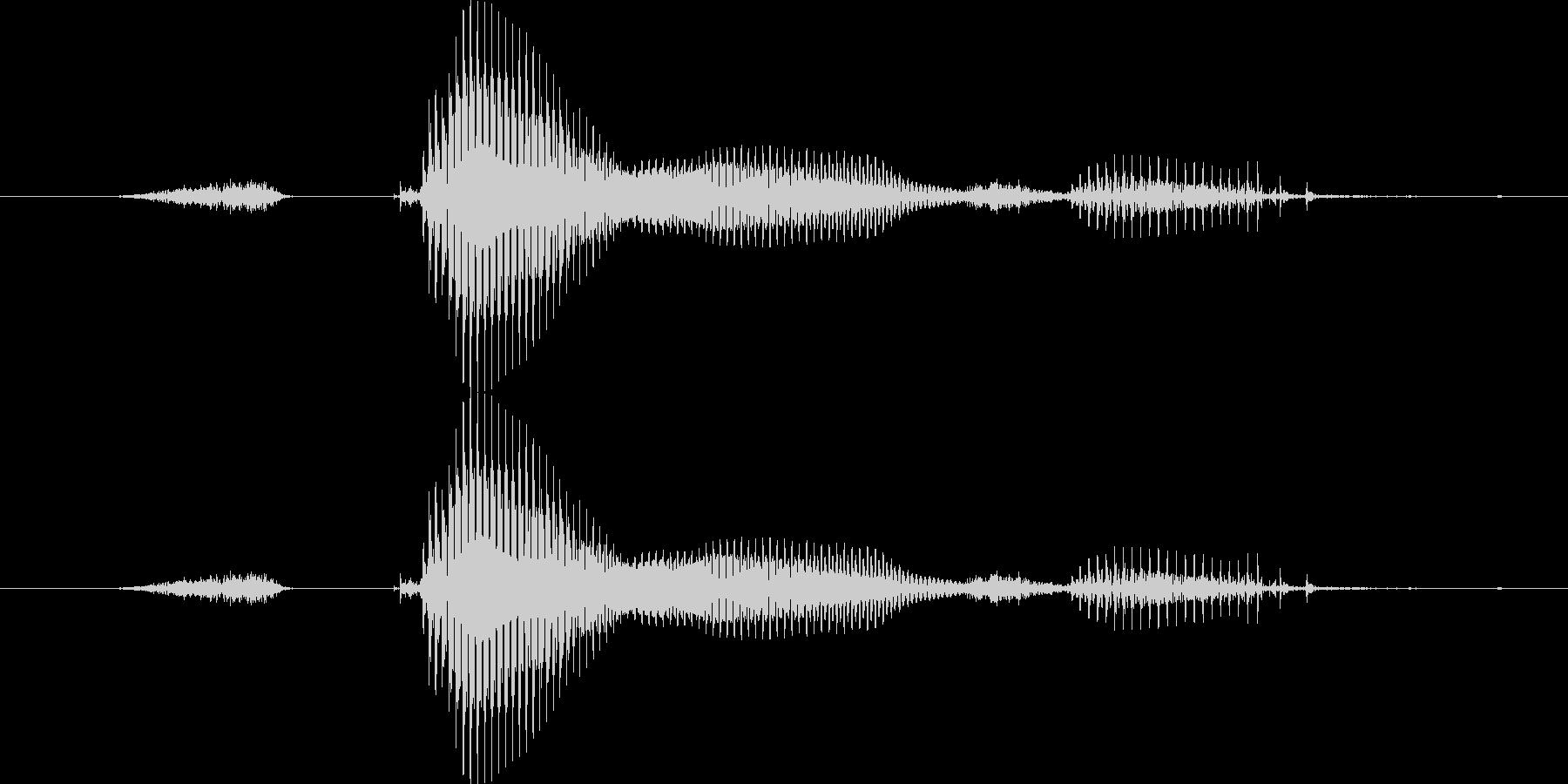 【星座】双子座の未再生の波形