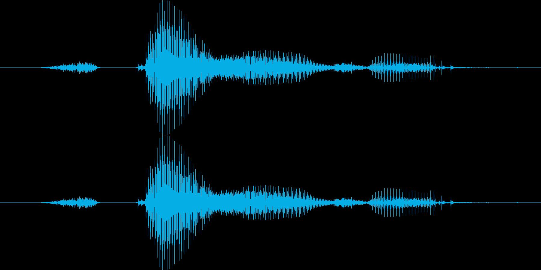 【星座】双子座の再生済みの波形