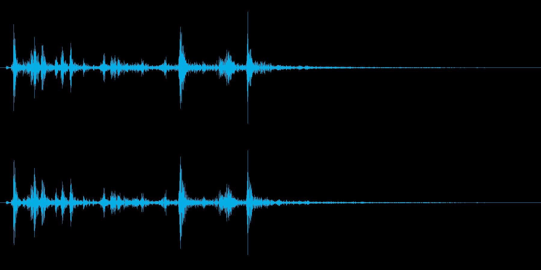 【生録音】かじる音 噛む カリッ 再現音の再生済みの波形