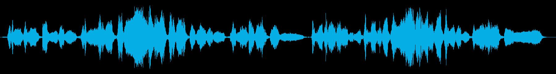 Amazing Graceのアカペラ歌唱の再生済みの波形