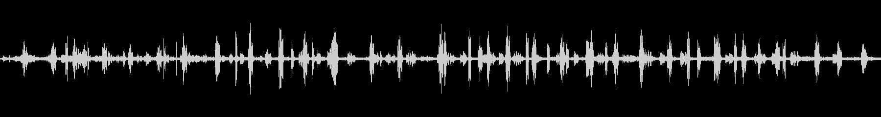 軽井沢の野鳥たち2の未再生の波形