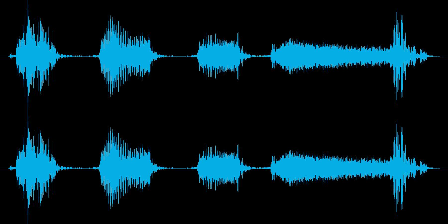 ロボットの再生済みの波形