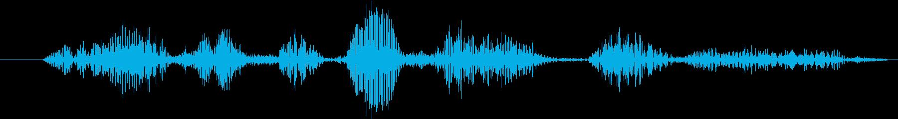 フィクション AI 女性ステータス...の再生済みの波形