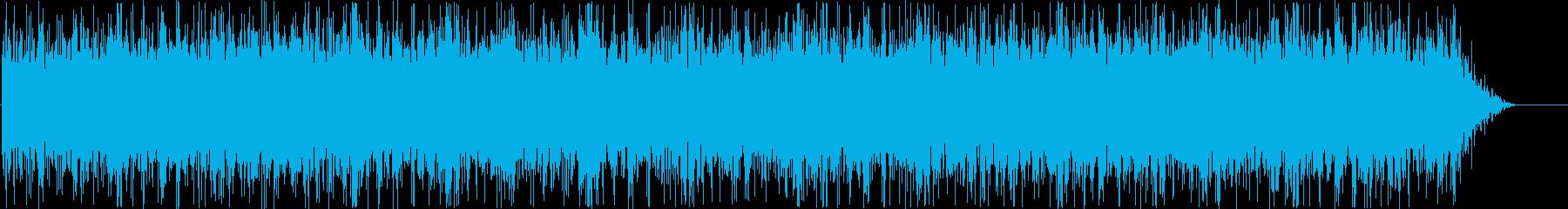 イメージ クレイジーディジュリドゥ01の再生済みの波形
