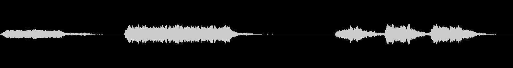 フォグホーンとエコー、2種類のホーンの未再生の波形