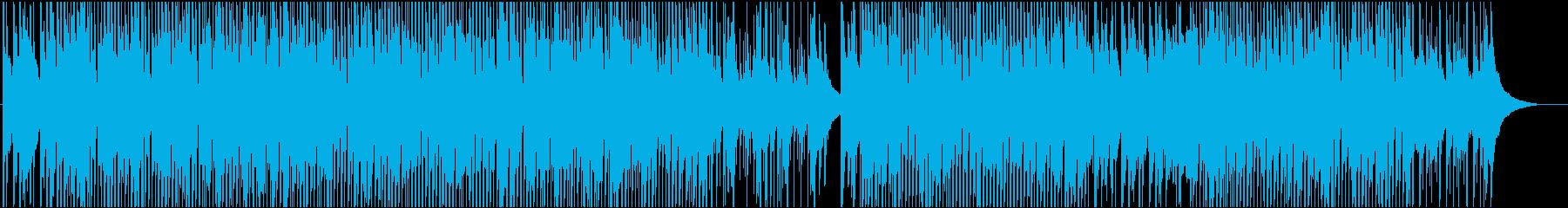 アメリカーナ楽器。弾力があり、フレ...の再生済みの波形
