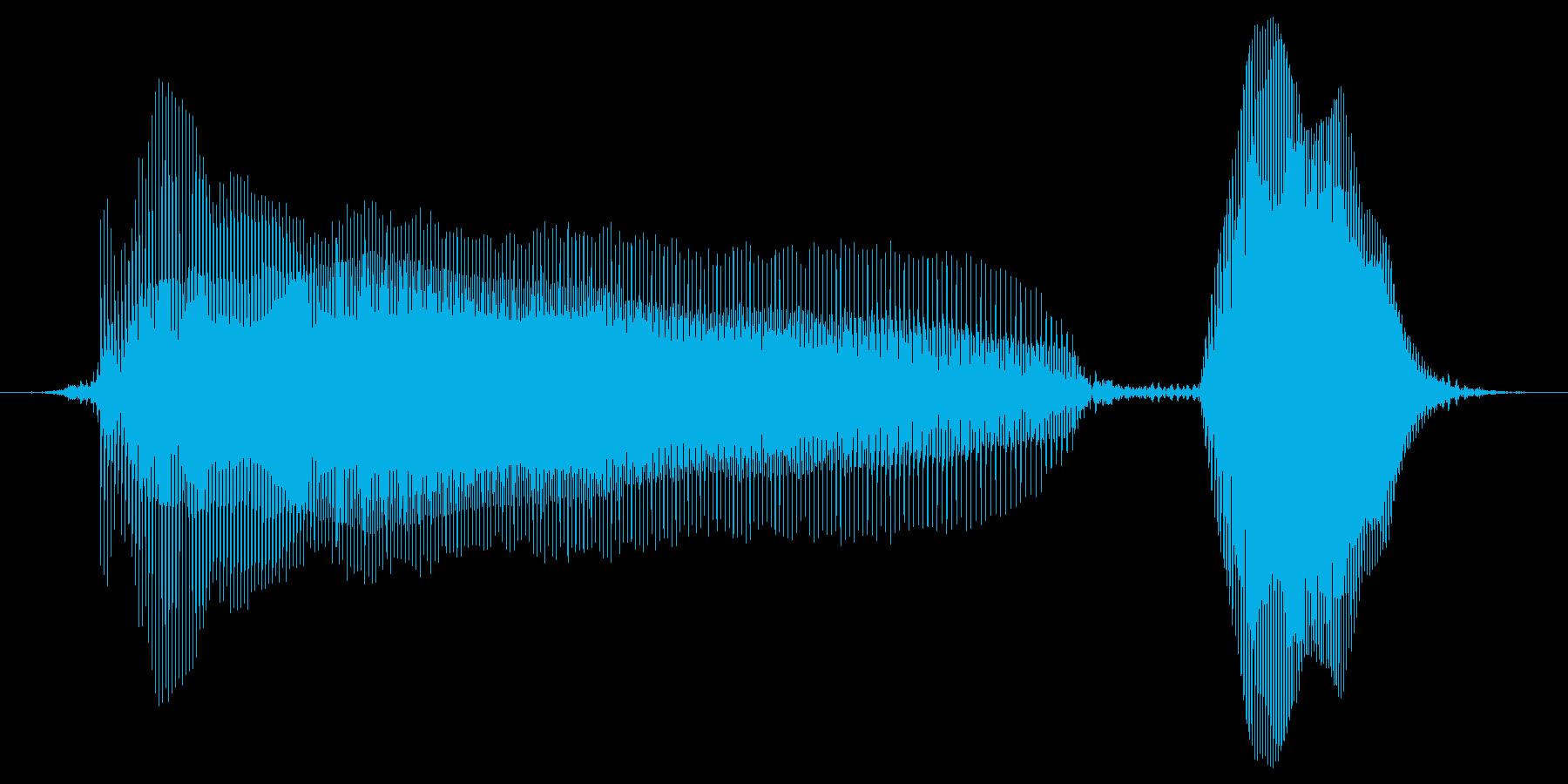 あーーーーほ!の再生済みの波形