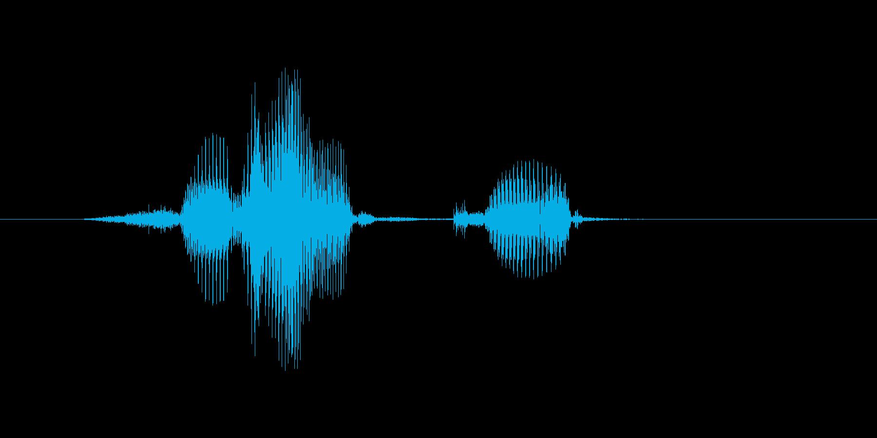 開くの再生済みの波形