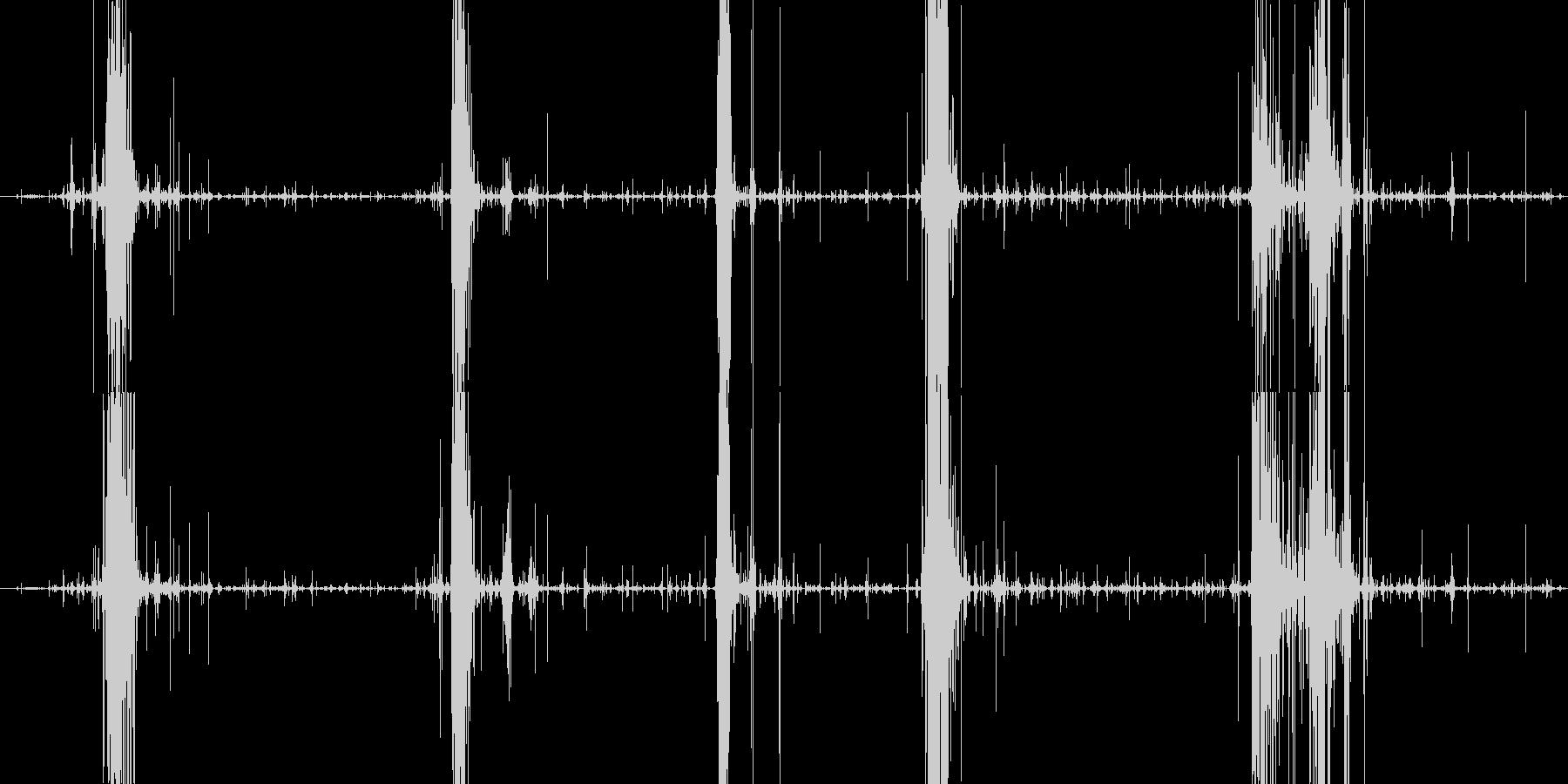 サクサクパリパリ パイ咀嚼音の未再生の波形