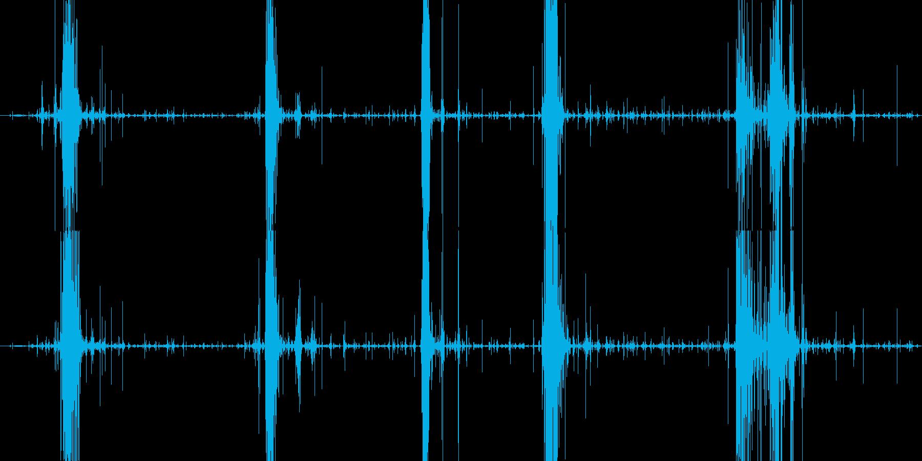 サクサクパリパリ パイ咀嚼音の再生済みの波形