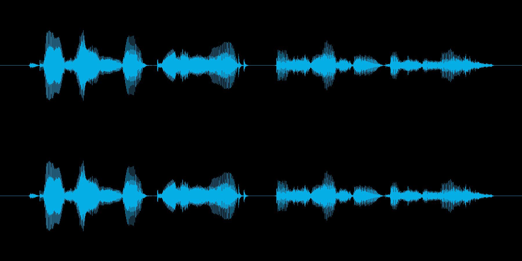 【時報・時間】午前6時を、お知らせいた…の再生済みの波形