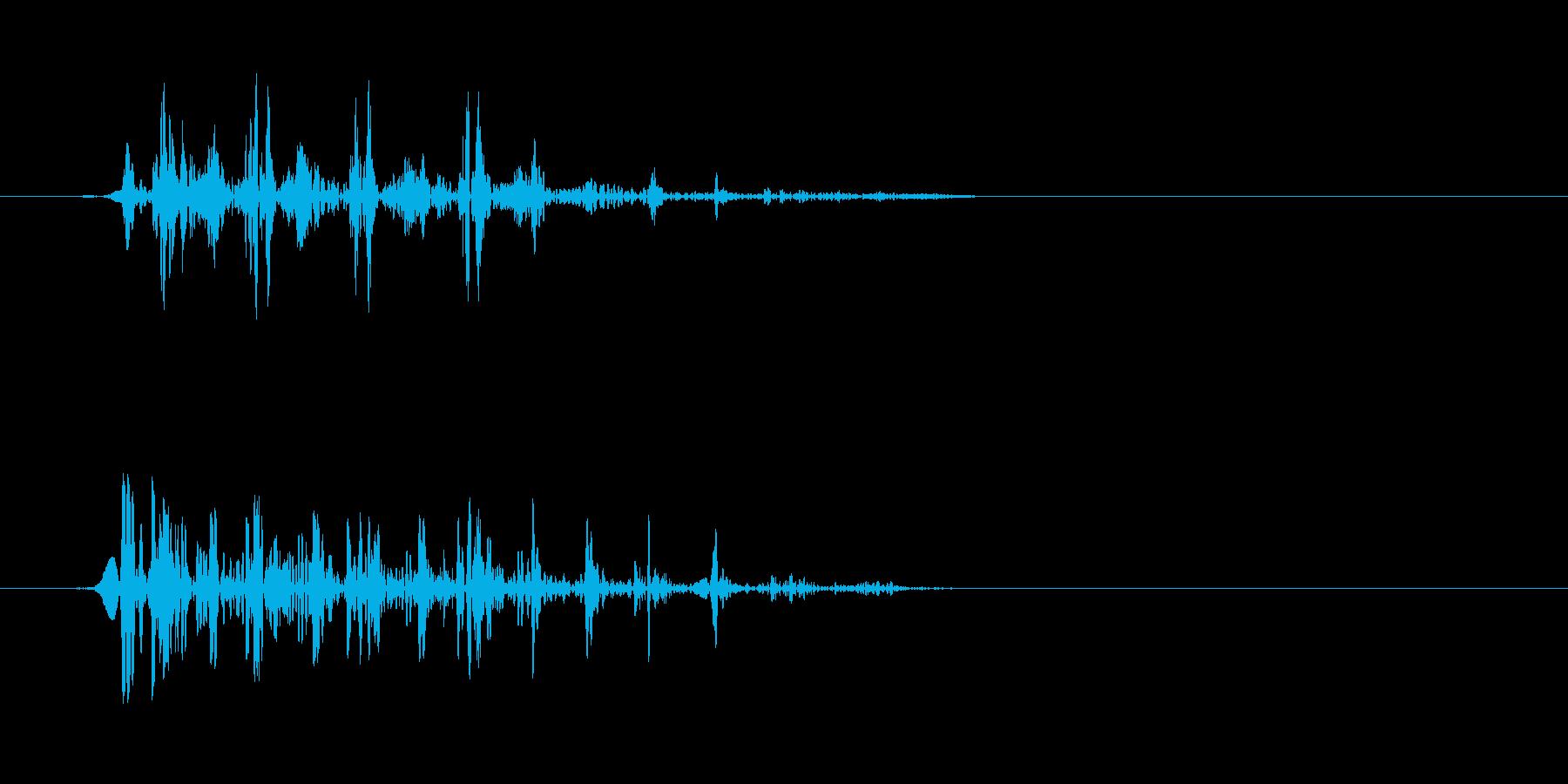 グワ、っというアヒルの鳴き声の再生済みの波形