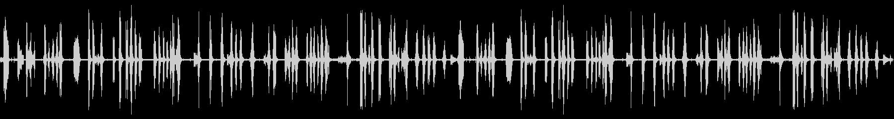 鳴き声、R歯類他の野生動物の未再生の波形