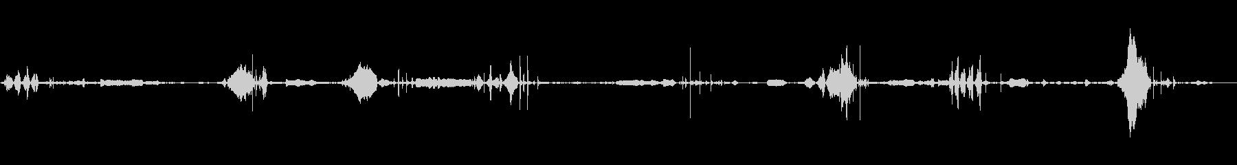 ブラックベア:スニッフィング、リッ...の未再生の波形