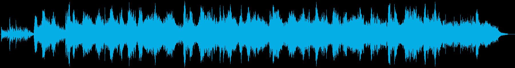 世界的な二胡奏者の生演奏 美しく切ないの再生済みの波形