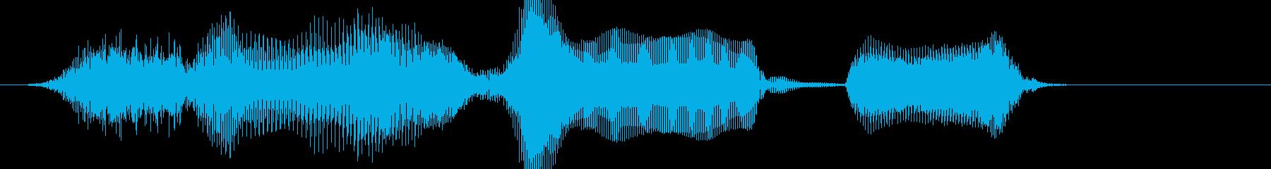 水曜日_かわいいの再生済みの波形