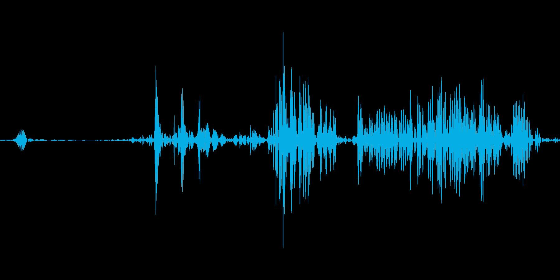 飲み込む音 ゴックンの再生済みの波形