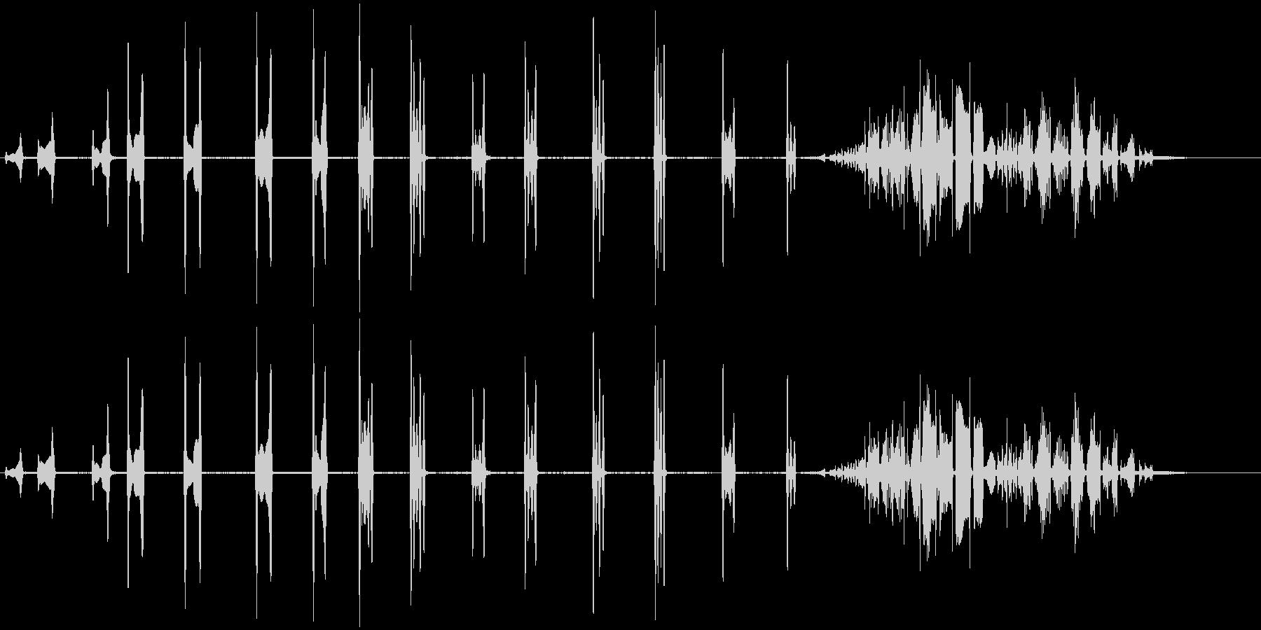 カールの未再生の波形