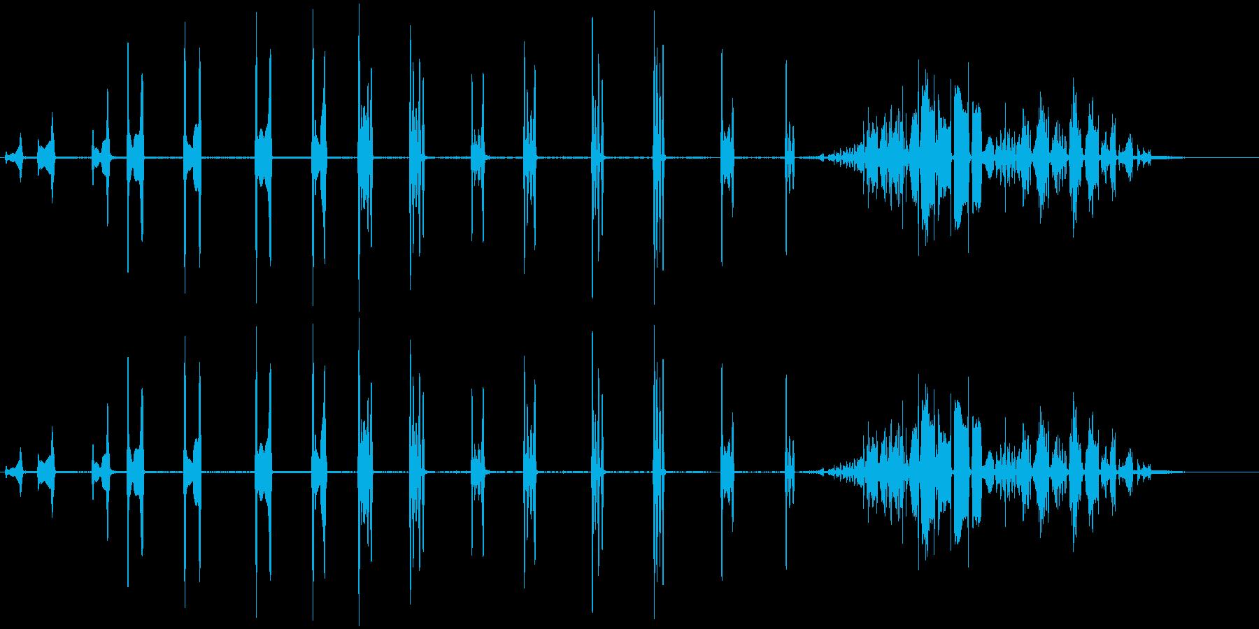 カールの再生済みの波形