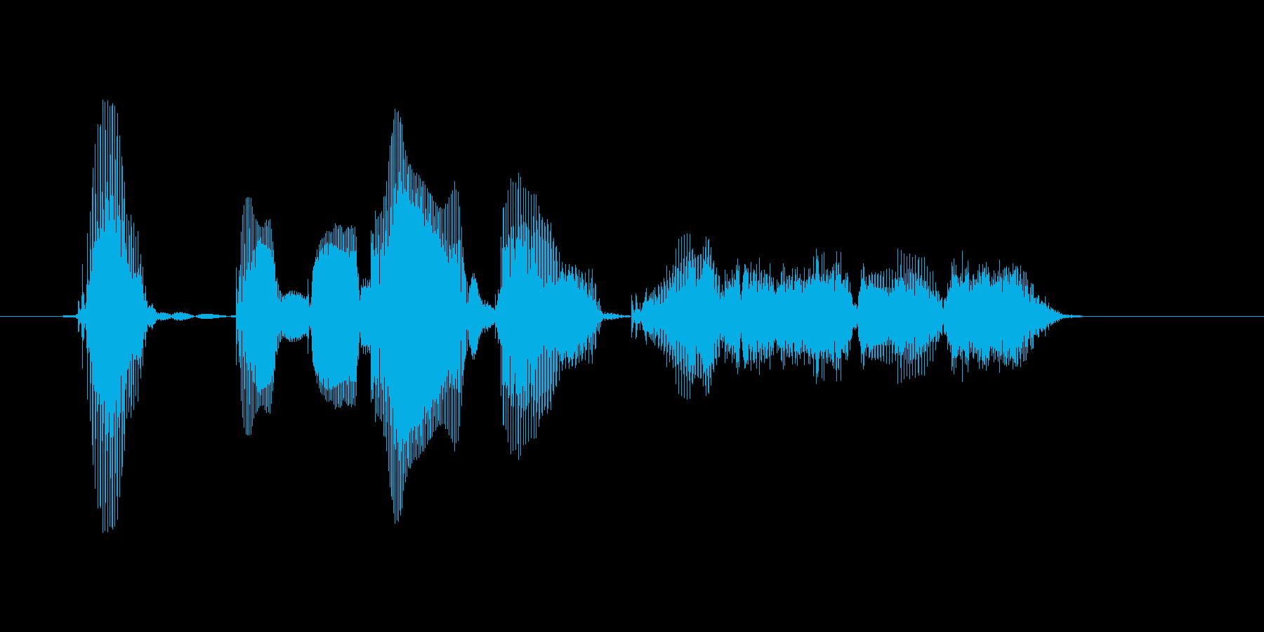 アップグレードを開始しますの再生済みの波形
