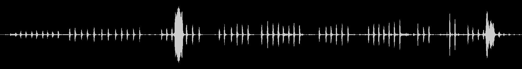 チキンクラッキングヘンハウスの未再生の波形
