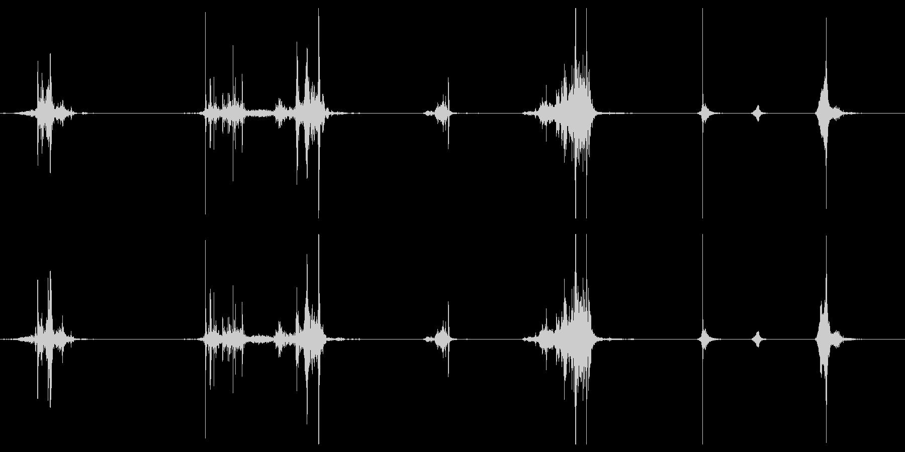 ASMR りんごを歯でかじりついている音の未再生の波形