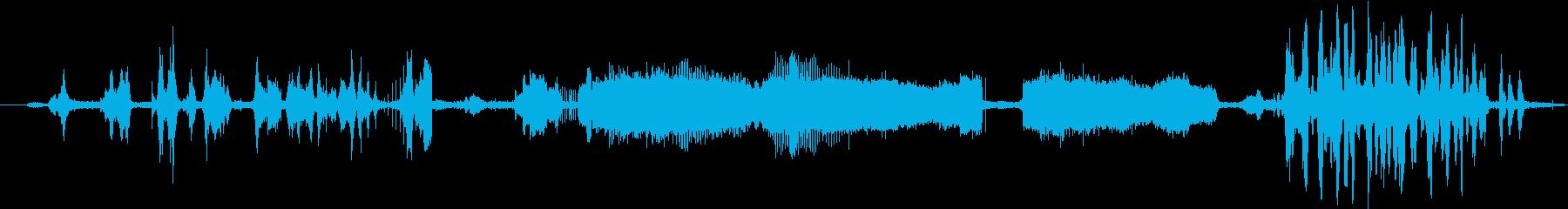 イルカのグループ:水上、声、クジラ...の再生済みの波形