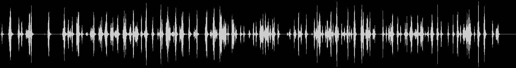 ピッピピッピ.。小鳥の鳴き声(複数・低)の未再生の波形