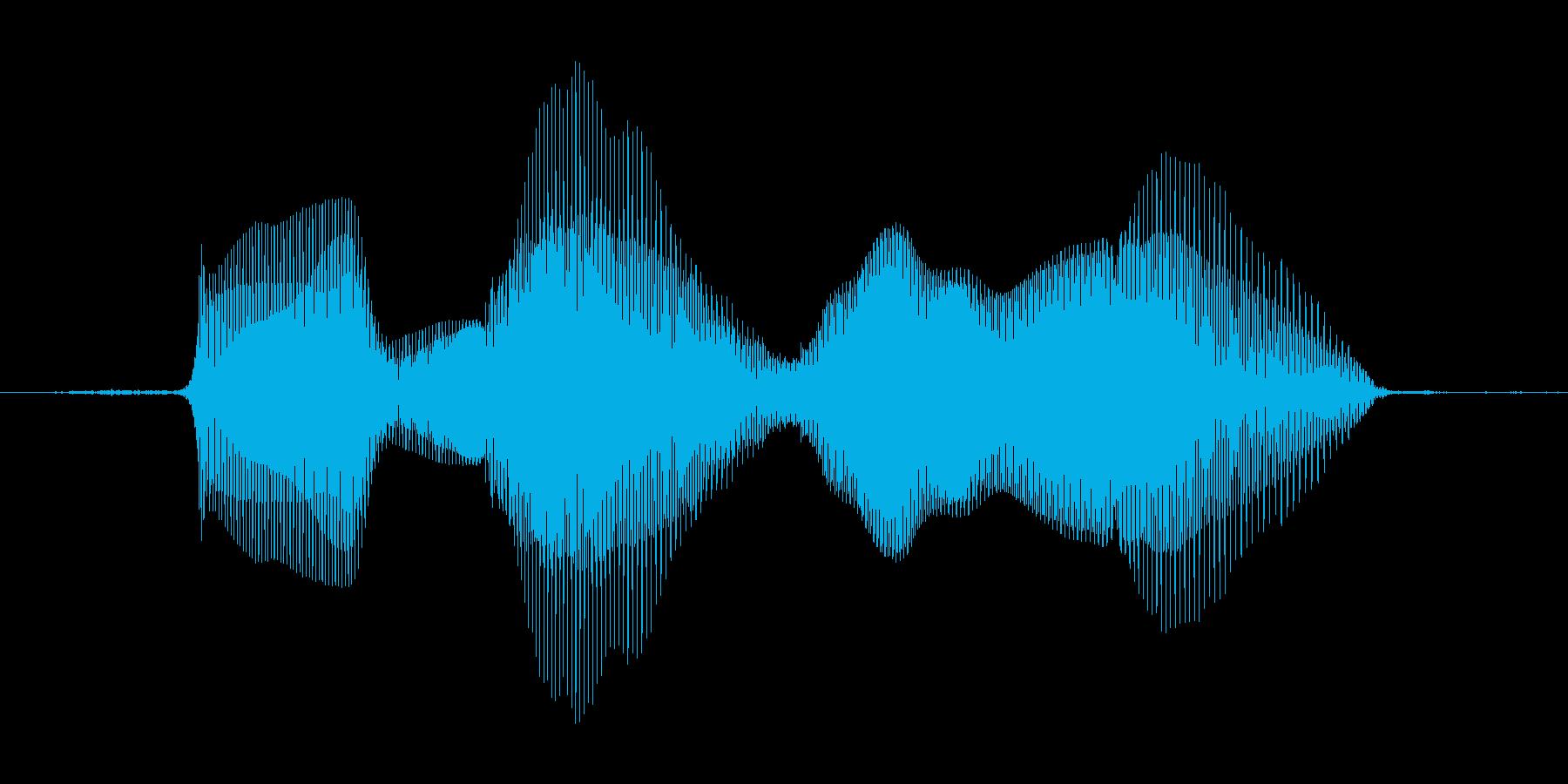 ほめほめの再生済みの波形