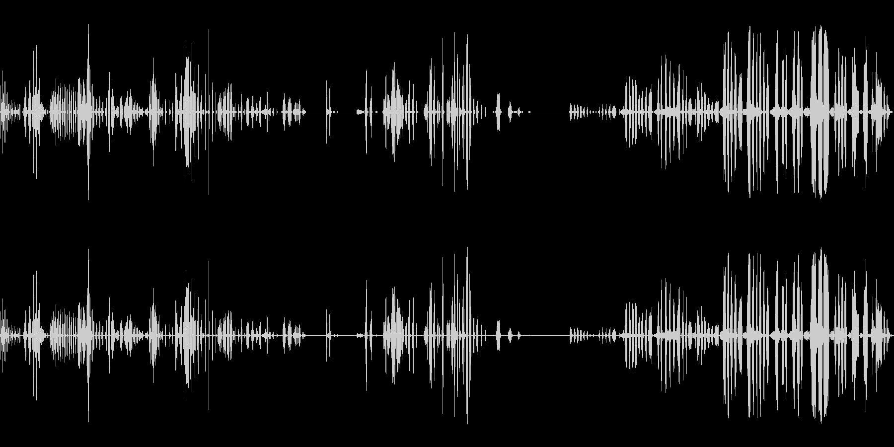 人間、笑い、笑い; DIGIFFE...の未再生の波形