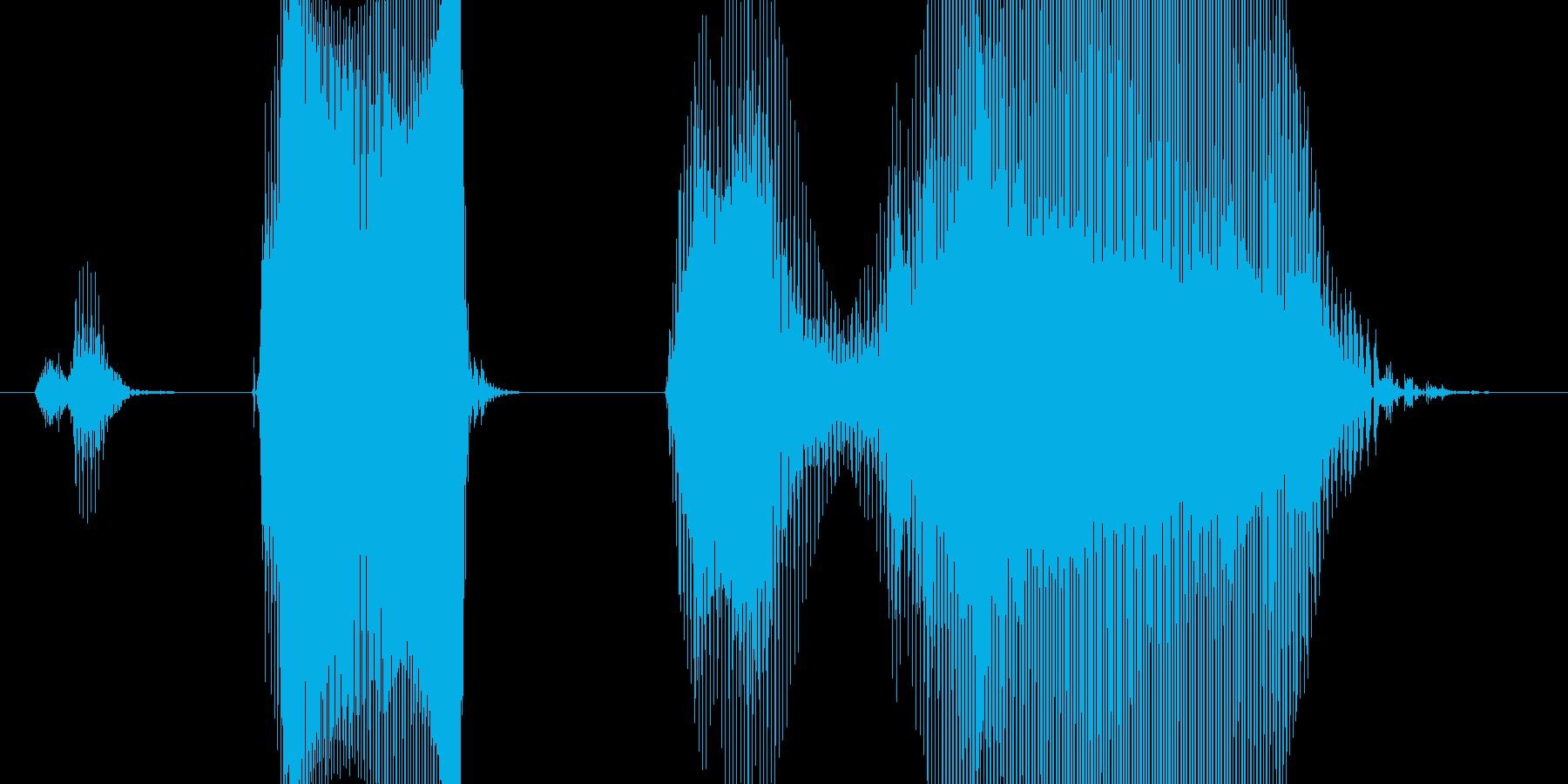 ステップ4(こども)の再生済みの波形