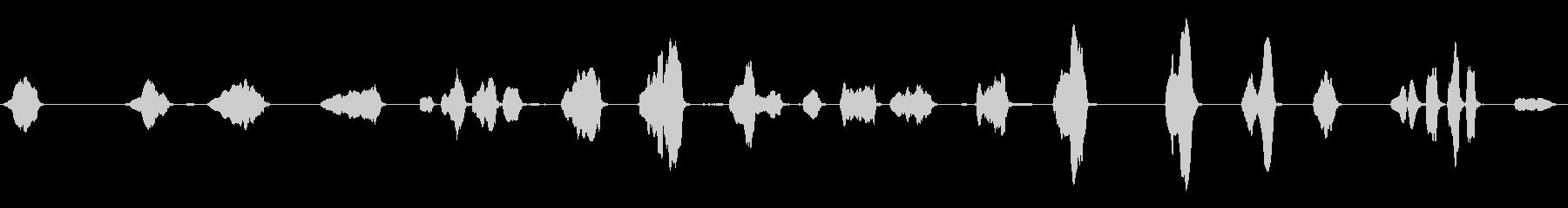 男性:クレイジー・マン・バブリング...の未再生の波形