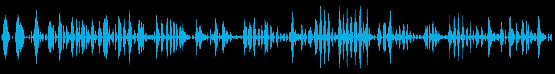 12週齢の赤ちゃん:泣いての再生済みの波形