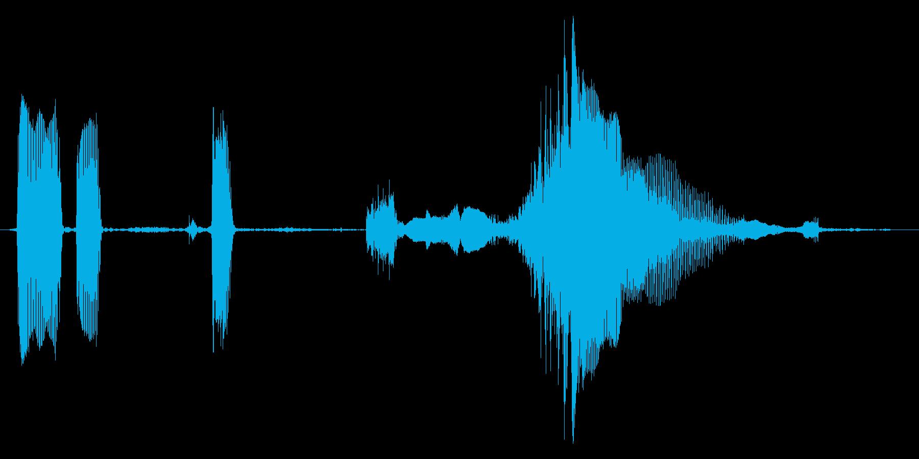 赤ちゃんの笑い声(コンデンサマイク使用)の再生済みの波形