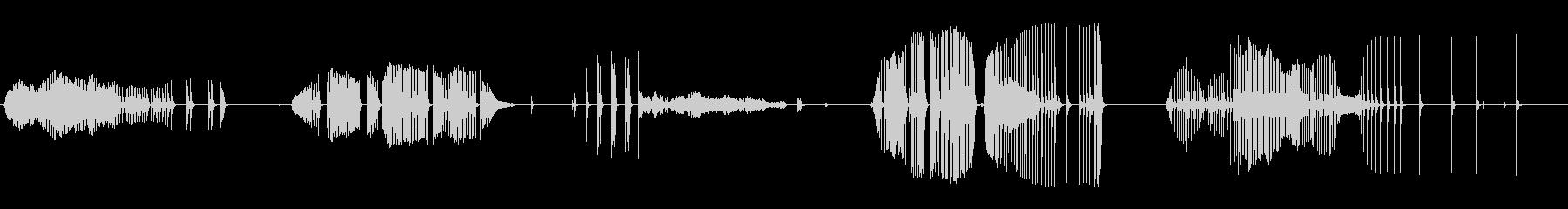 ラスパイバルーンクリークの未再生の波形