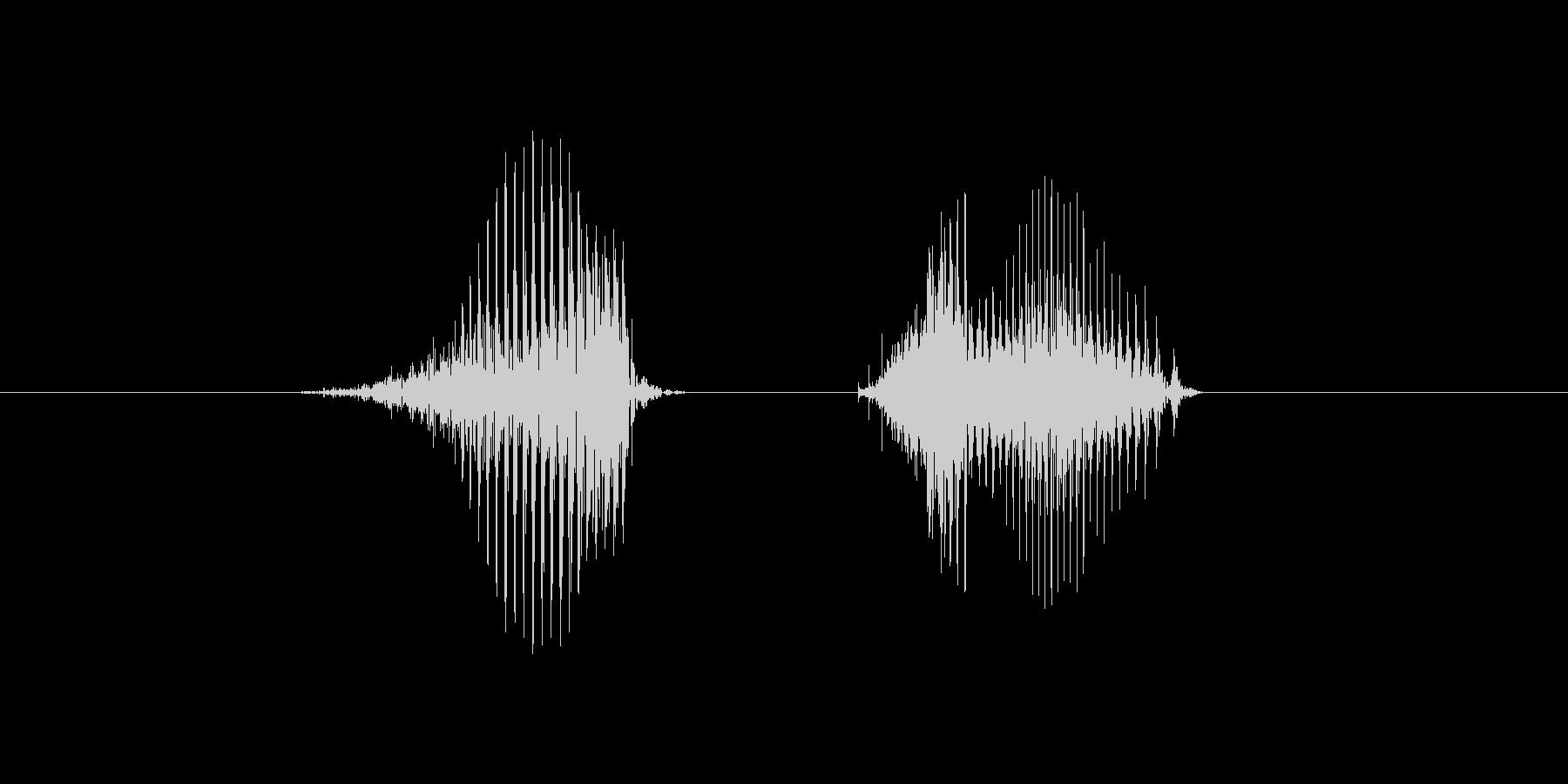 8(数字、女性ver.2)の未再生の波形