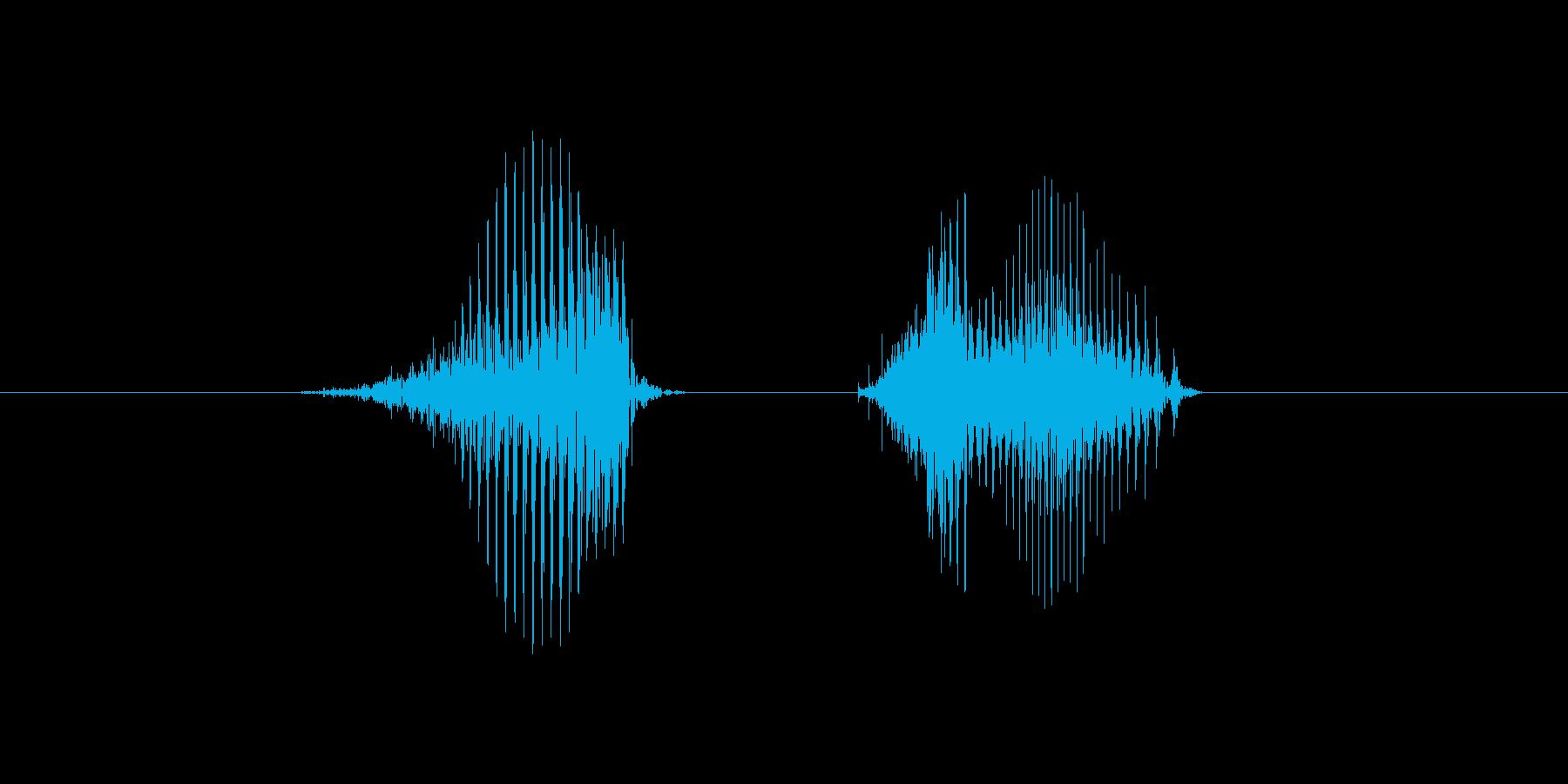 8(数字、女性ver.2)の再生済みの波形