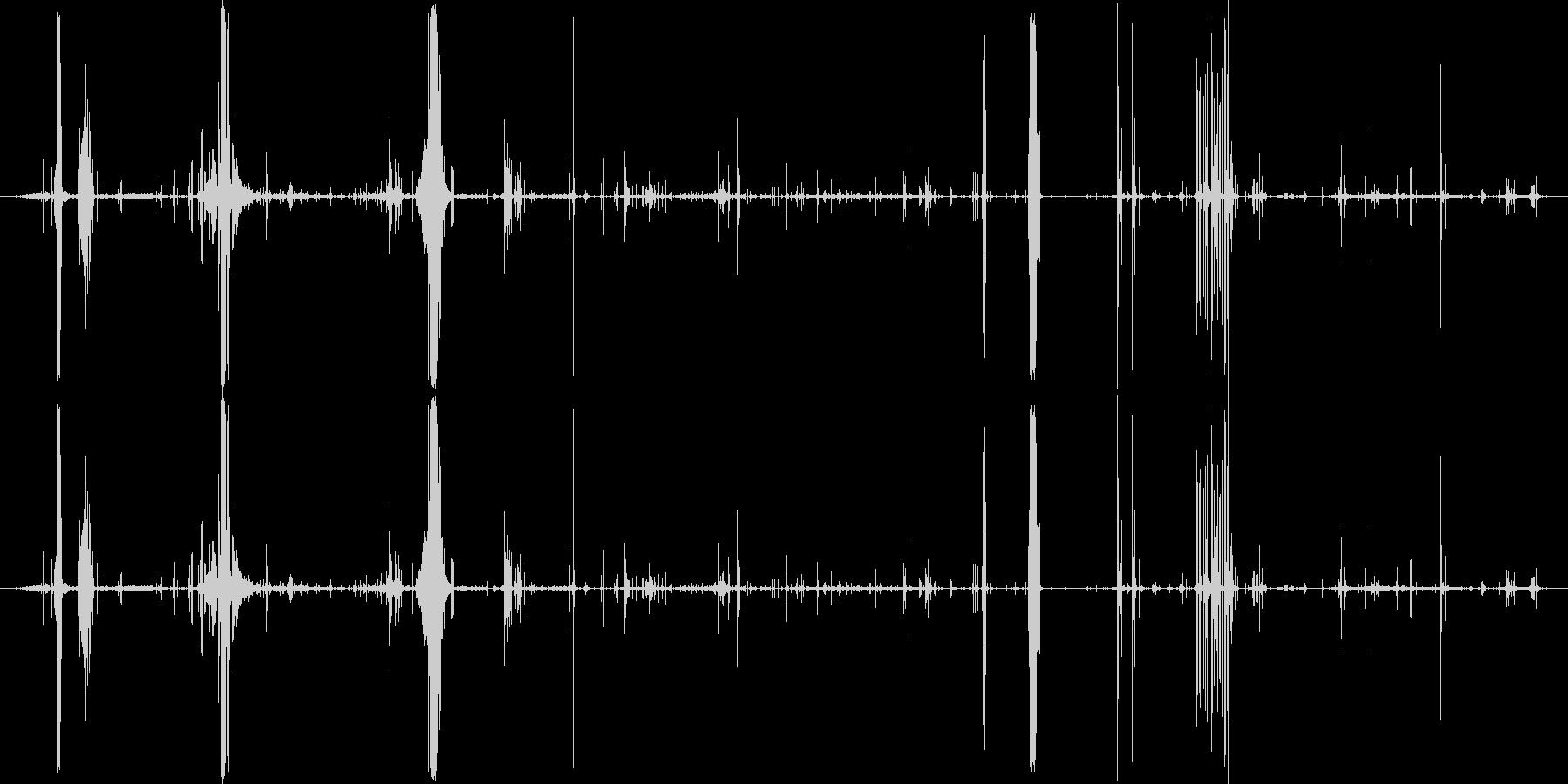 モンスター 肉食が遅い03の未再生の波形