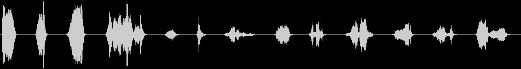 ほぼ先史時代のラクダの声の未再生の波形