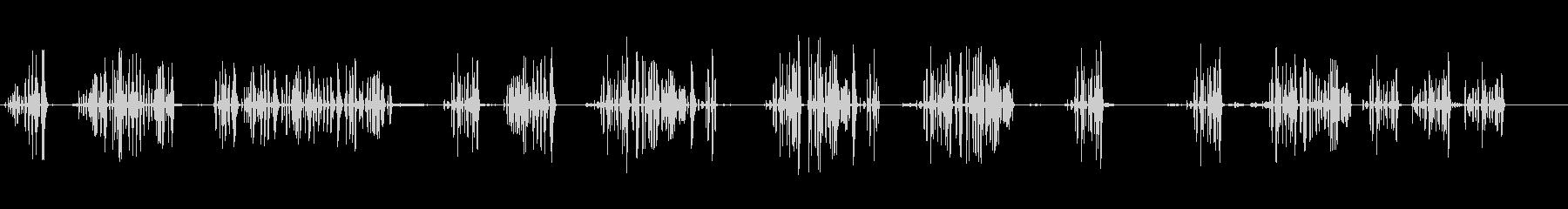 カデルネラの未再生の波形