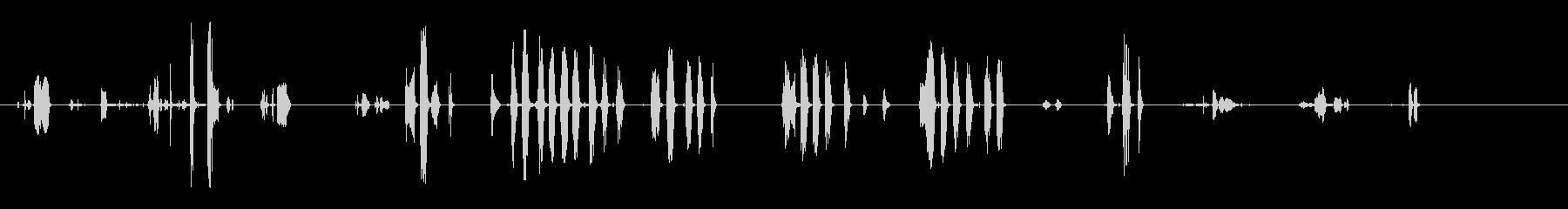 カラスの話-閉じる-鳥の未再生の波形