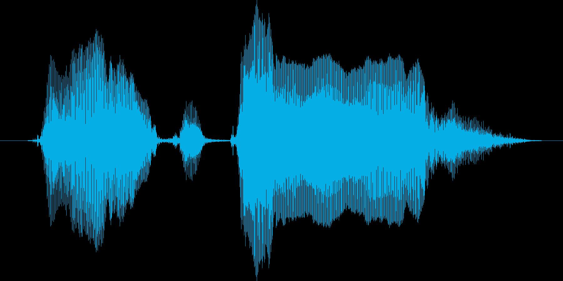 ゴーゴゴー!の再生済みの波形