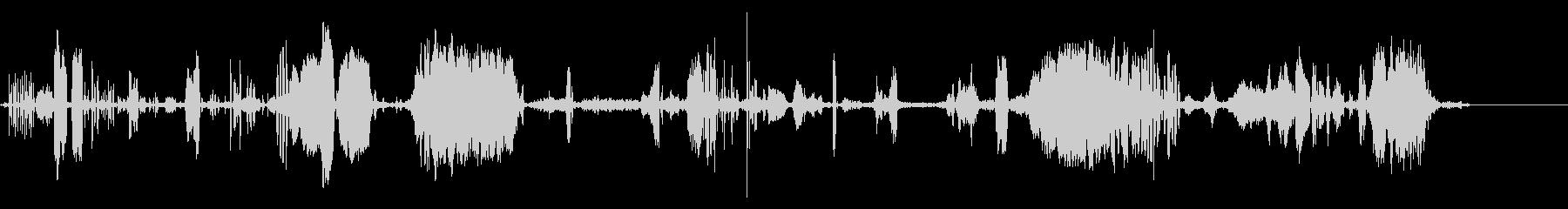 さまざまなハゲタカの未再生の波形