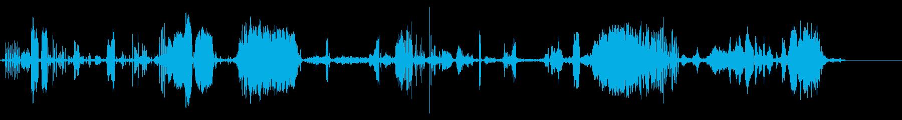 さまざまなハゲタカの再生済みの波形