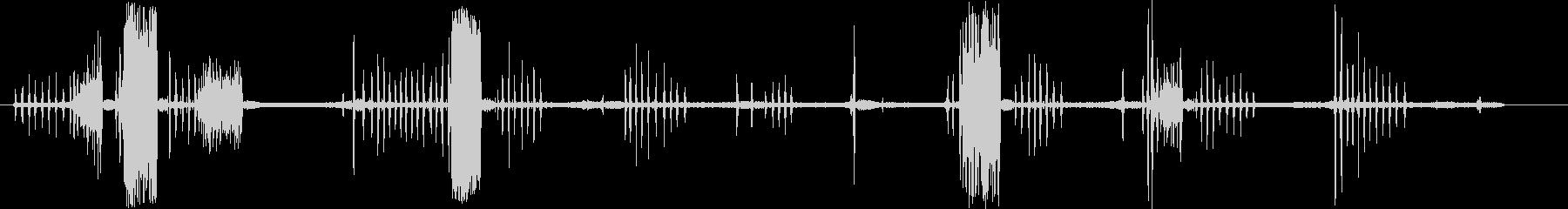 アナグマのうなり声、悲鳴。複数のう...の未再生の波形