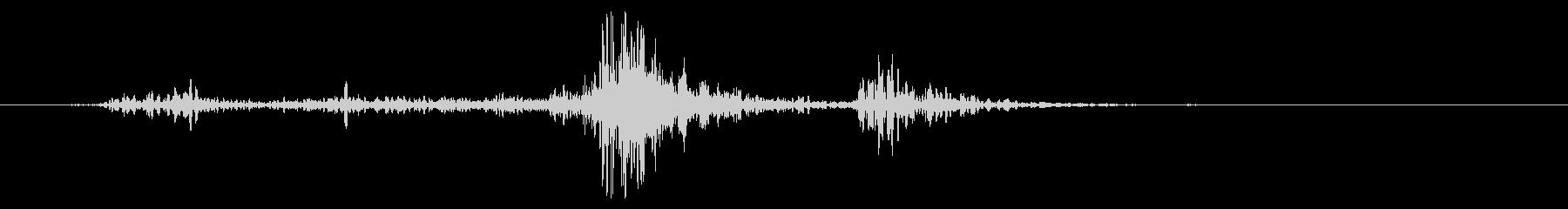 ラージファブリック:フラッピングウーシュの未再生の波形