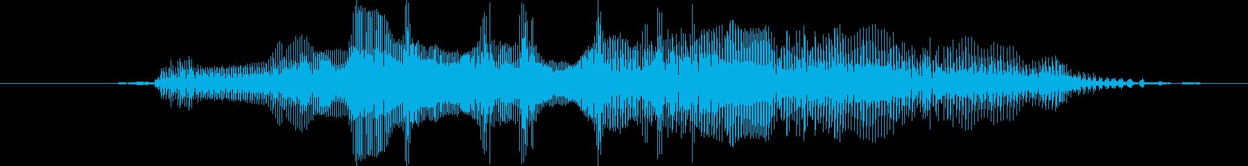鳴き声 リトルガールクライスクイーク01の再生済みの波形